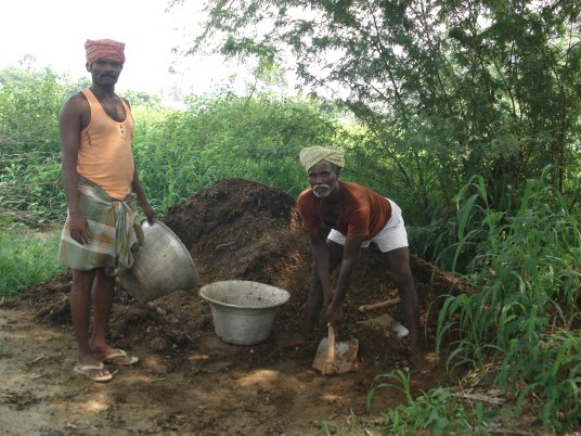Promotion of Organic Farming