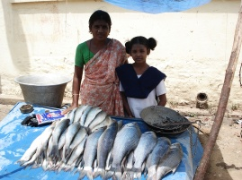 Fish Business for Mrs. Sumathi