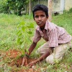 Enthusiastic child planting a tree in his school
